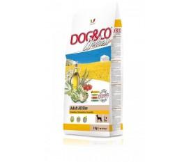 Dog&co Wellness holistic pollo e riso all-size