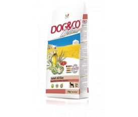 Dog&co Wellness holistic agnello e riso all size